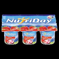 NUTRIDAY SMOOTH YOGURT STRAWBERRY 6'S