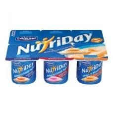 DANONE NUTRIDAY LOW FAT YOGHURT 6'S